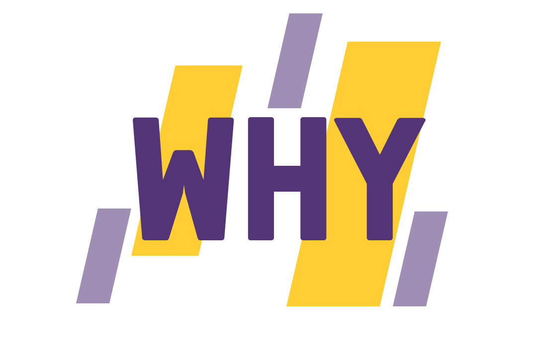 "The word ""why"""